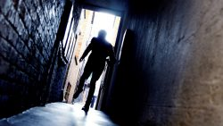 Evolutionary Psychology and Fear of Crime